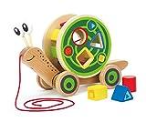 Hape E0349 - Nachzieh-Schnecke, Nachziehspielzeug, inkl. Farb- und Formensortierer, aus Holz, ab 12 Monate